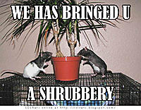 Click image to open a larger version of shrubbery.jpg. Views: 12.