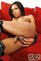 blackshemalex-barbie_1-009.jpg